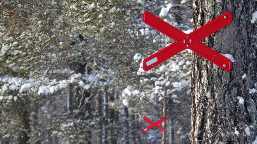Seltsame Verkehrszeichen mitten im Wald - ah nein, Skitrailmarkierungen