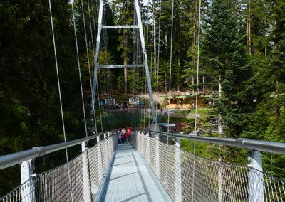 Auf der Wildline Hängebrücke - Blick zum Eingang