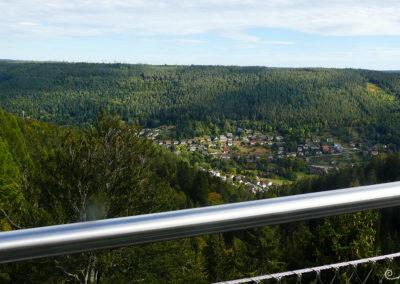 Blick über das Tal und Bad Wildbad
