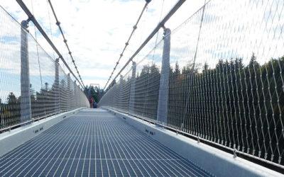 Wildline – die ungewöhnliche Hängebrücke im Schwarzwald
