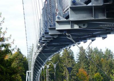 Wildline Hängebrücke - die Konstruktion